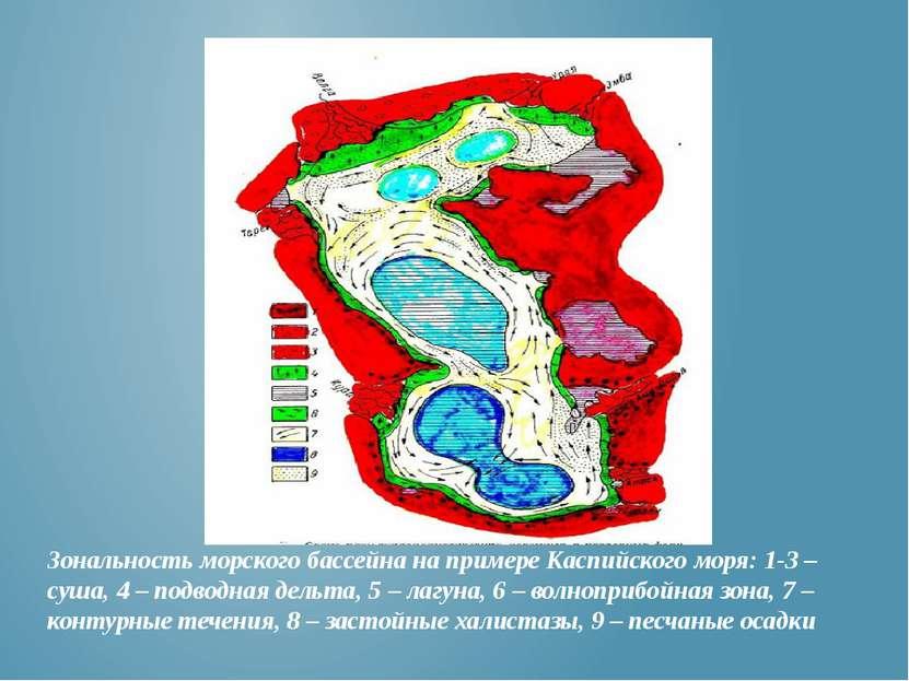 Зональность морского бассейна на примере Каспийского моря: 1-3 – суша, 4 – по...