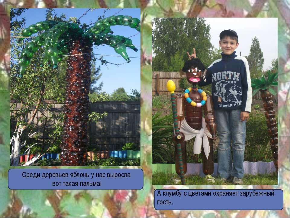 А клумбу с цветами охраняет зарубежный гость. Среди деревьев яблонь у нас выр...