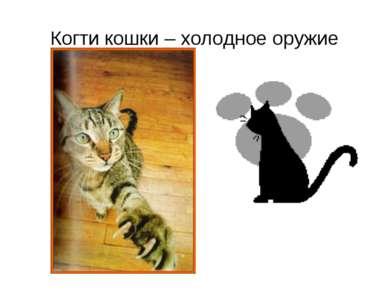 Когти кошки – холодное оружие