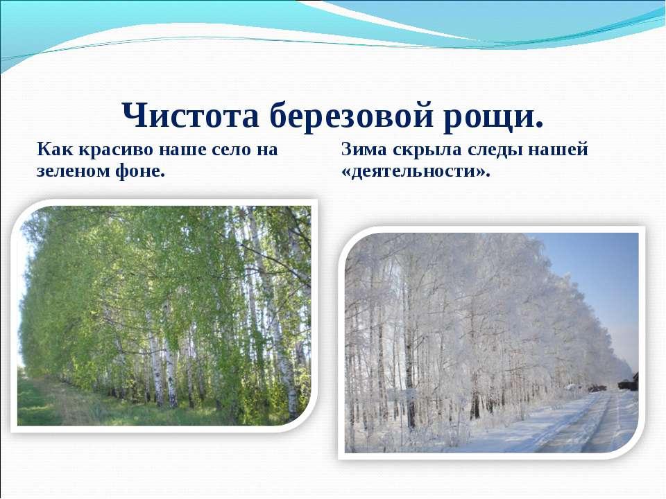 Чистота березовой рощи. Как красиво наше село на зеленом фоне. Зима скрыла сл...