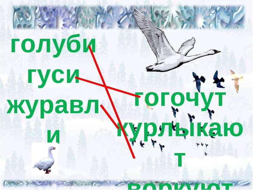 голуби гуси журавли гогочут курлыкают воркуют