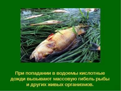 При попадании в водоемы кислотные дожди вызывают массовую гибель рыбы и други...