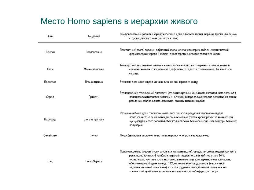 Место Homo sapiens в иерархии живого Тип Хордовые В эмбриональном развитии хо...