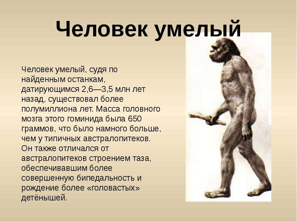 Человек умелый, судя по найденным останкам, датирующимся 2,6—3,5 млн лет наза...