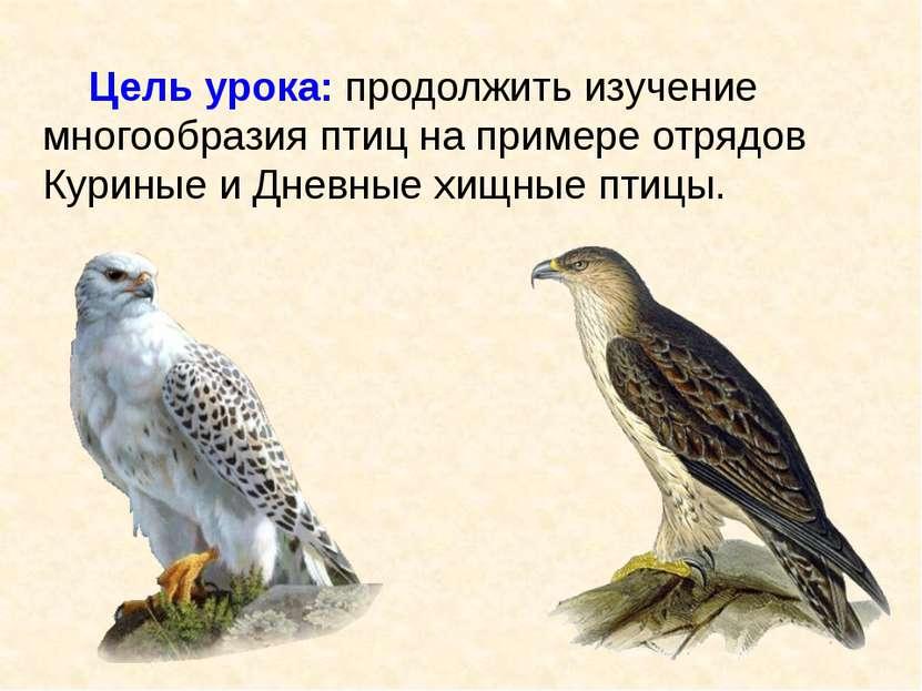 Цель урока: продолжить изучение многообразия птиц на примере отрядов Куриные ...