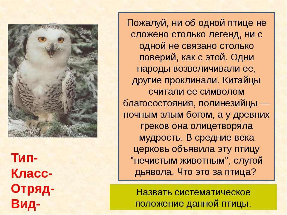 Пожалуй, ни об одной птице не сложено столько легенд, ни с одной не связано с...