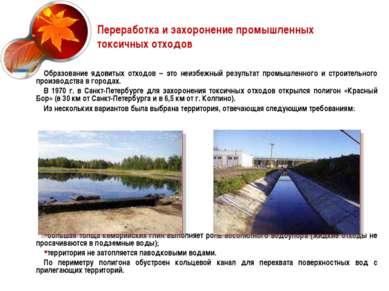 Переработка и захоронение промышленных токсичных отходов Образование ядовитых...