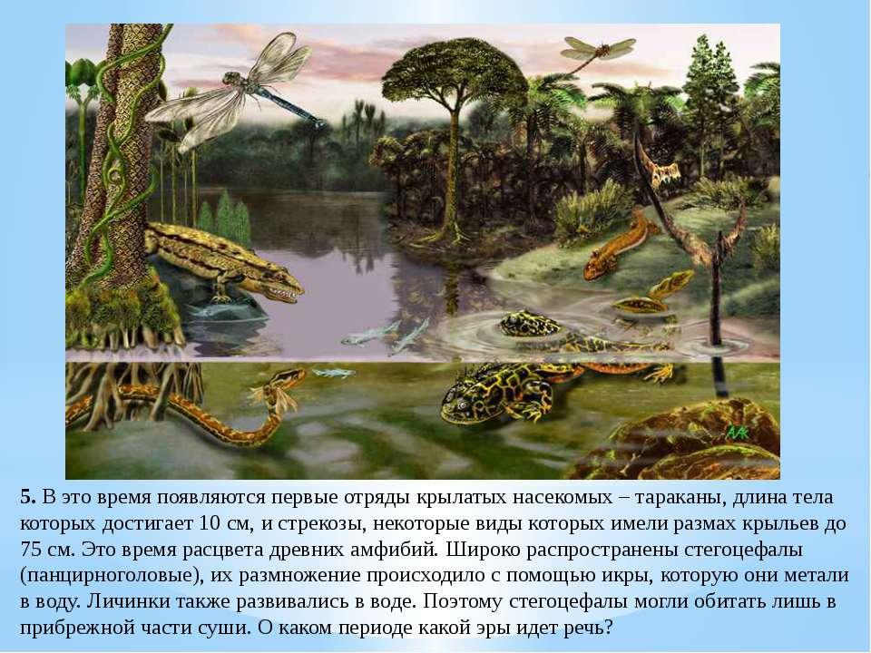 Раскройте причины биологического процветания пресмыкающихся в мезозойскую эру?