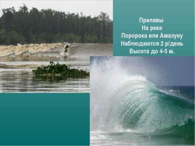 Приливы На реке Поророка или Амазуну Наблюдаются 2 р/день Высота до 4-5 м.
