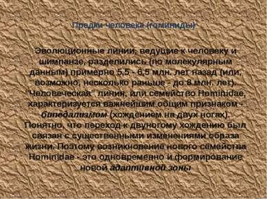 Предки человека (гоминиды) Эволюционные линии, ведущие к человеку и шимпанзе,...