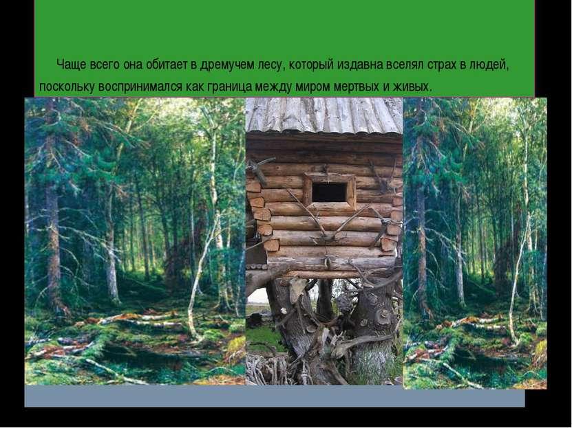 Чаще всего она обитает в дремучем лесу, который издавна вселял страх в людей,...