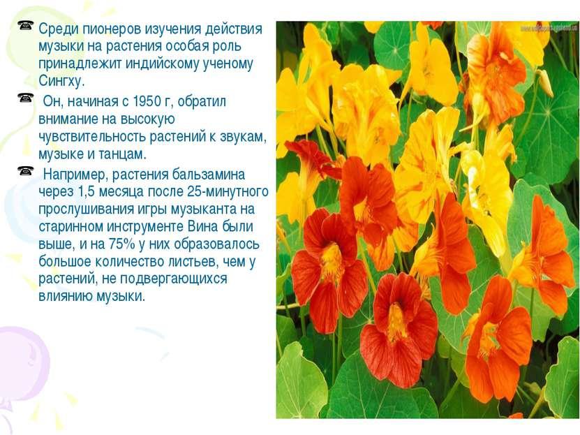 Среди пионеров изучения действия музыки на растения особая роль принадлежит и...