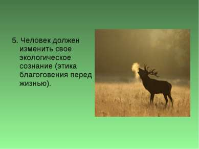 5. Человек должен изменить свое экологическое сознание (этика благоговения пе...