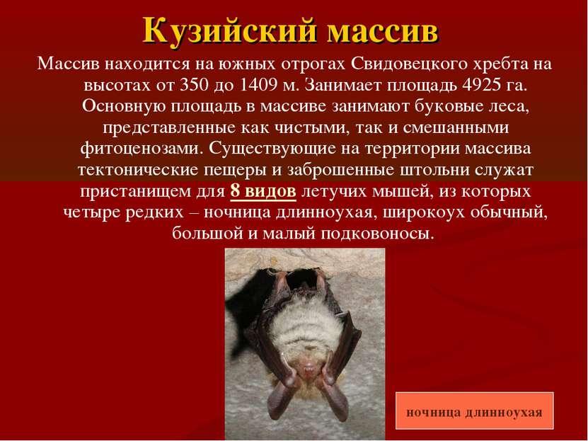 Кузийский массив Массив находится на южных отрогах Свидовецкого хребта на выс...