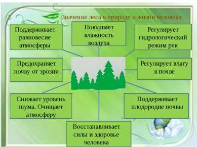 Значение леса в природе и жизни человека. Поддерживает равновесие атмосферы П...