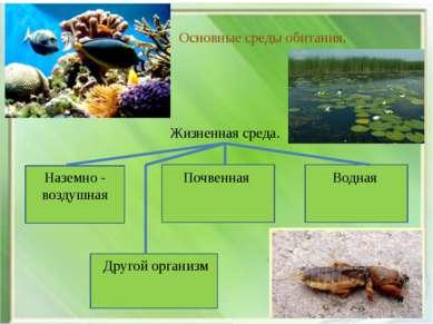 Основные среды обитания. Жизненная среда. Наземно - воздушная Почвенная Водна...