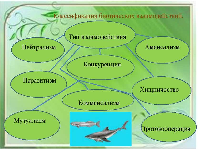 Классификация биотических взаимодействий. Нейтрализм Тип взаимодействия Конку...