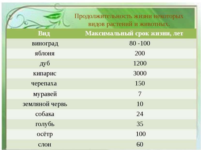 Продолжительность жизни некоторых видов растений и животных. Вид Максимальный...