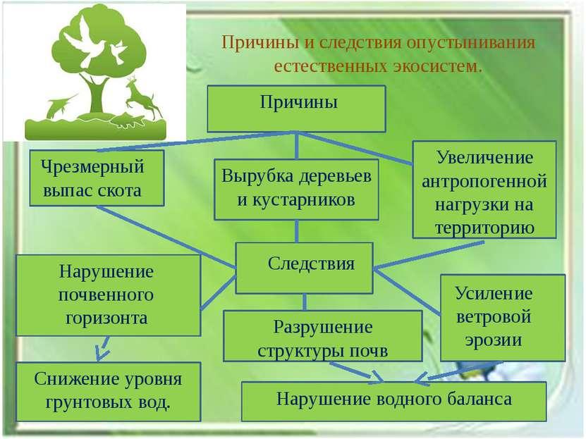 Причины и следствия опустынивания естественных экосистем. Причины Чрезмерный ...