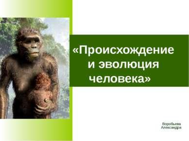 «Происхождение и эволюция человека» Воробьева Александра