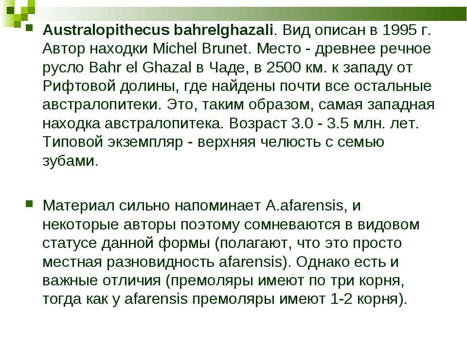 Australopithecus bahrelghazali. Вид описан в 1995 г. Автор находки Michel Bru...
