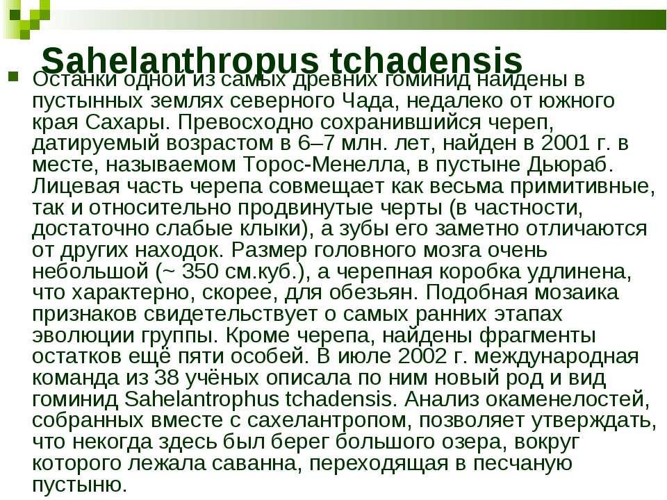 Sahelanthropus tchadensis Останки одной из самых древних гоминид найдены в пу...