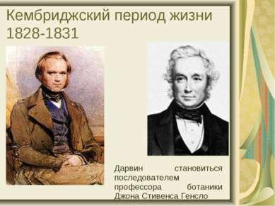 Кембриджский период жизни 1828-1831 Дарвин становиться последователем професс...