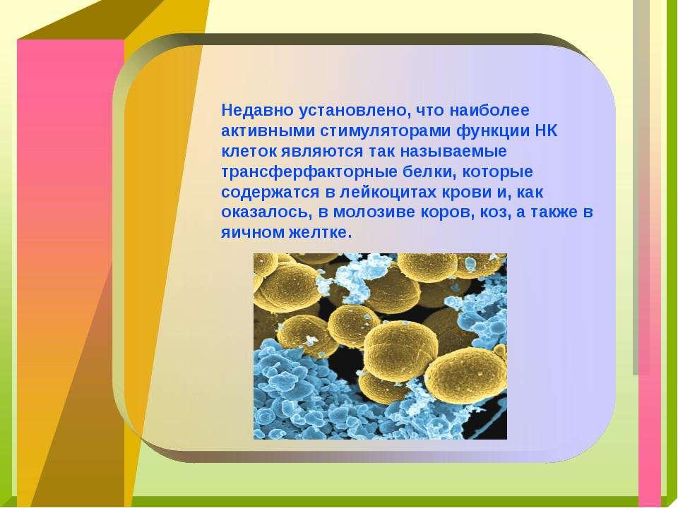 Недавно установлено, что наиболее активными стимуляторами функции НК клеток я...