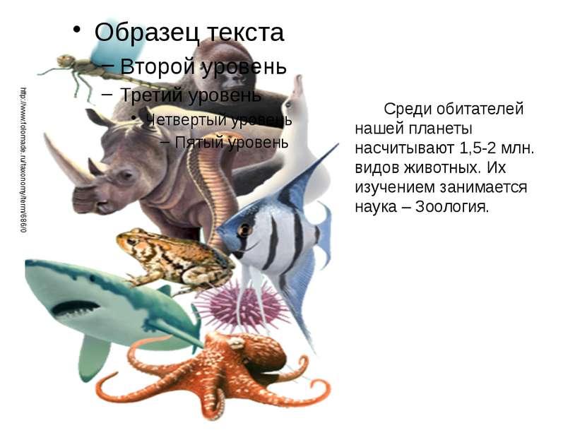 Среди обитателей нашей планеты насчитывают 1,5-2 млн. видов животных. Их изуч...