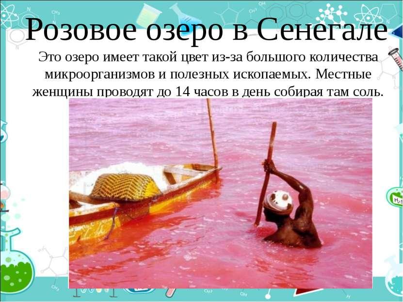 Розовое озеро в Сенегале Это озеро имеет такой цвет из-за большого количества...