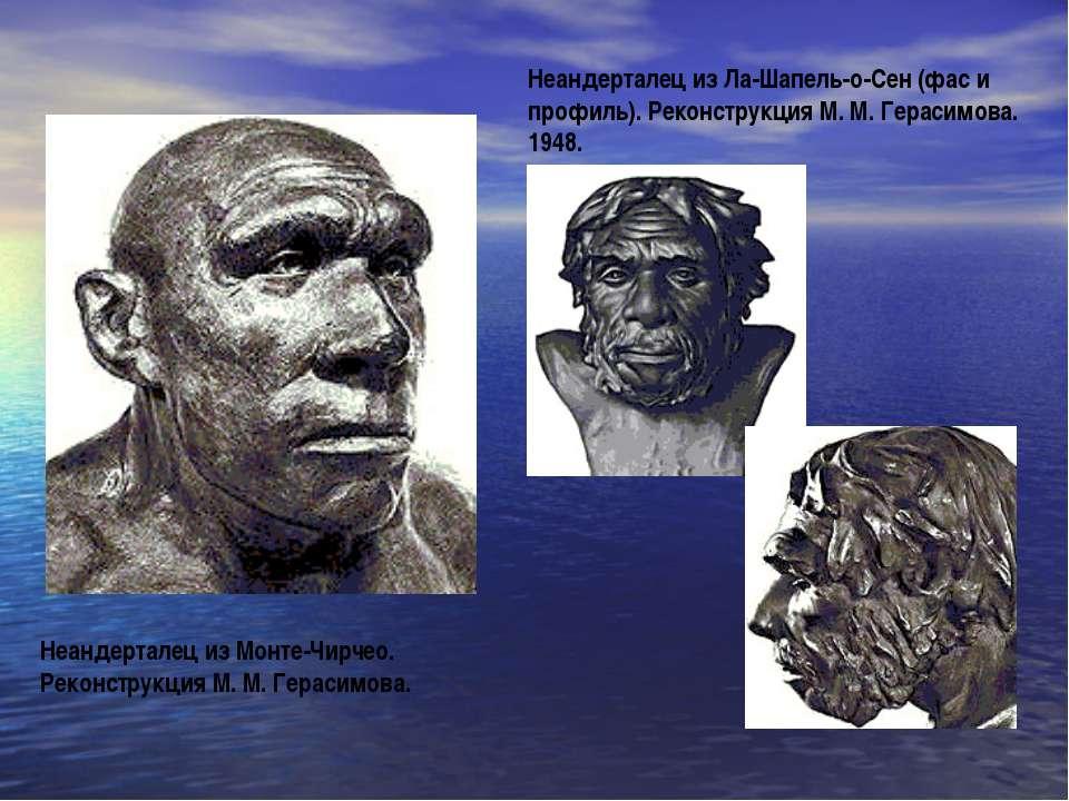 Неандерталец из Монте-Чирчео. Реконструкция М. М. Герасимова. Неандерталец из...