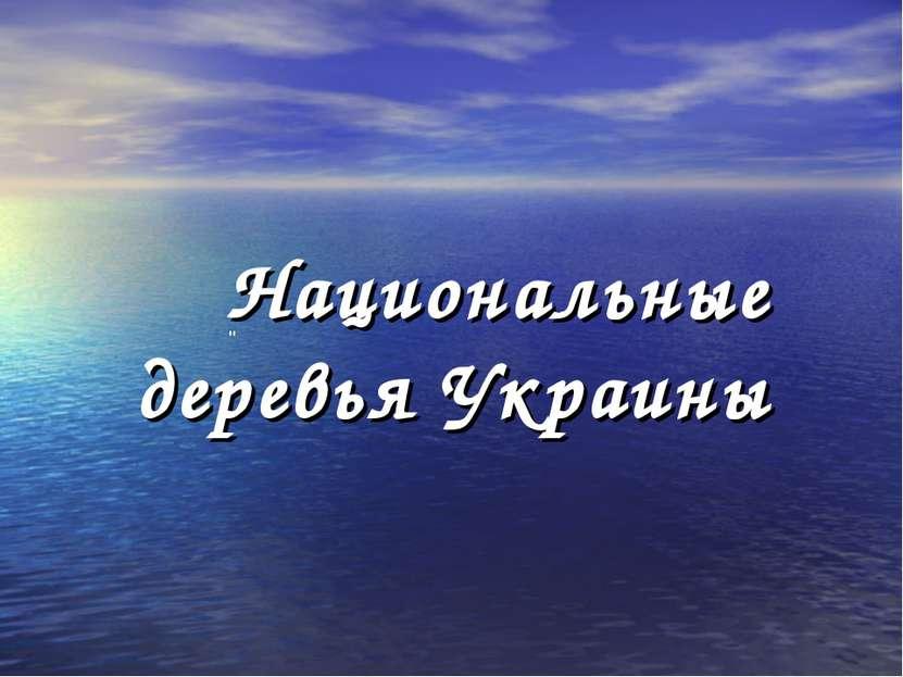 """Национальные деревья Украины """""""