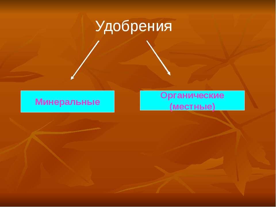 Удобрения Минеральные Органические (местные)