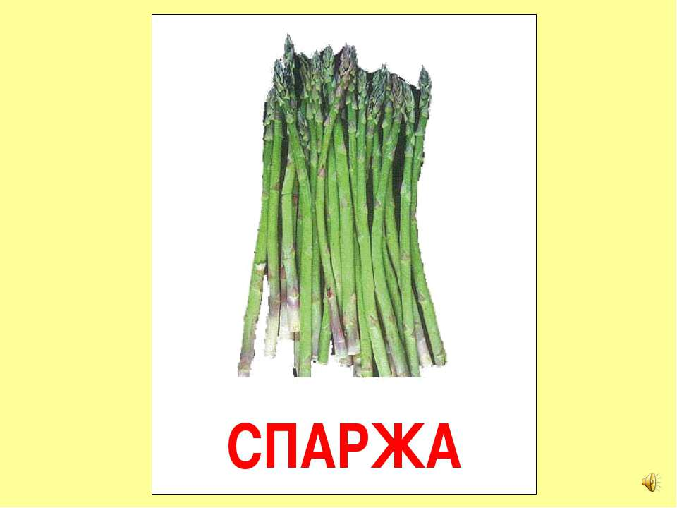 СПАРЖА