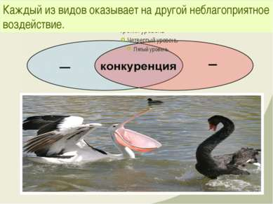Каждый из видов оказывает на другой неблагоприятное воздействие.