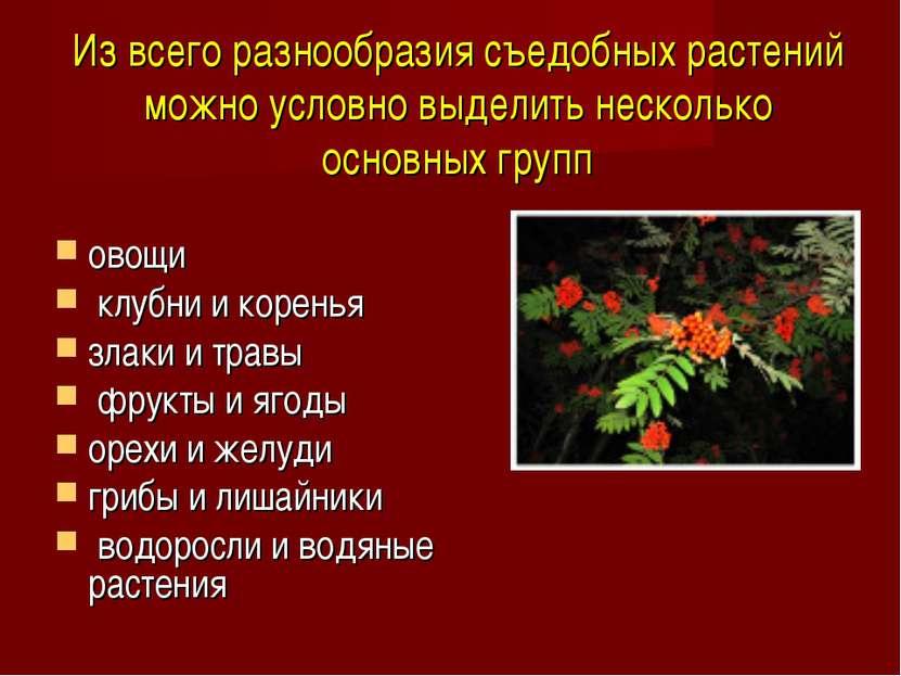 Из всего разнообразия съедобных растений можно условно выделить несколько осн...
