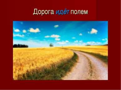 Дорога идёт полем