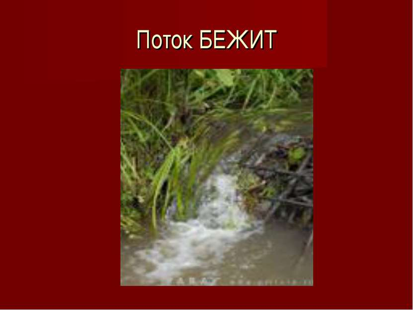 Поток БЕЖИТ