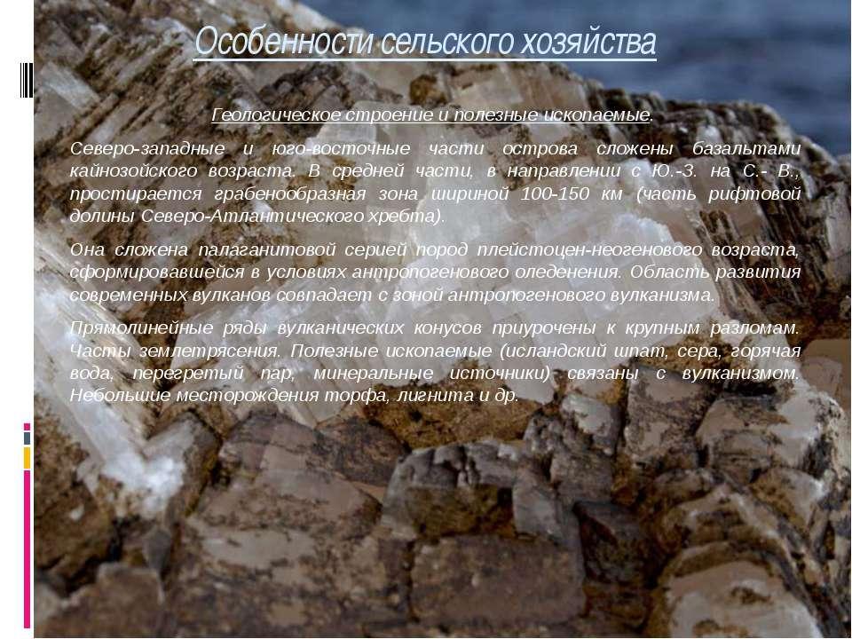 Особенности сельского хозяйства Геологическое строение и полезные ископаемые....