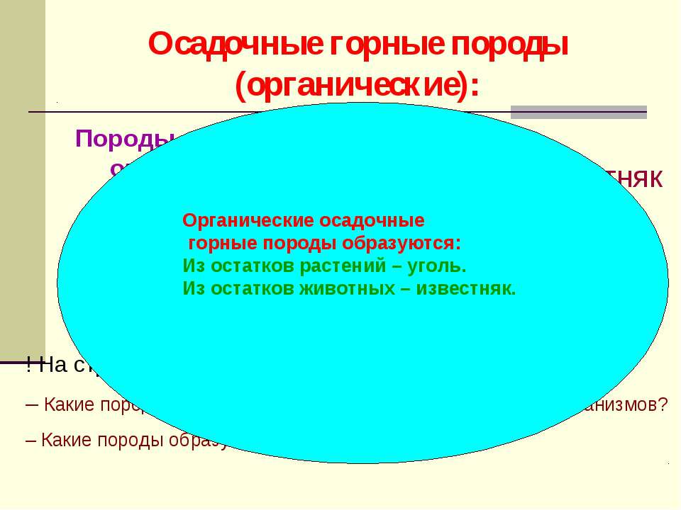 Осадочные горные породы (органические): Породы органического происхождения об...