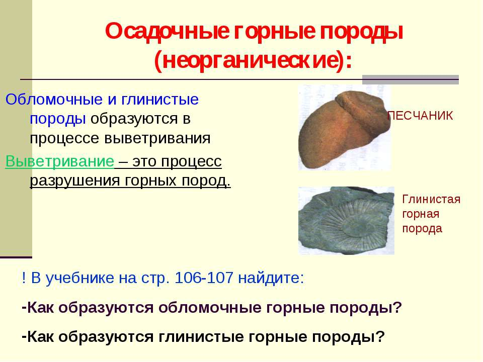 Осадочные горные породы (неорганические): Обломочные и глинистые породы образ...