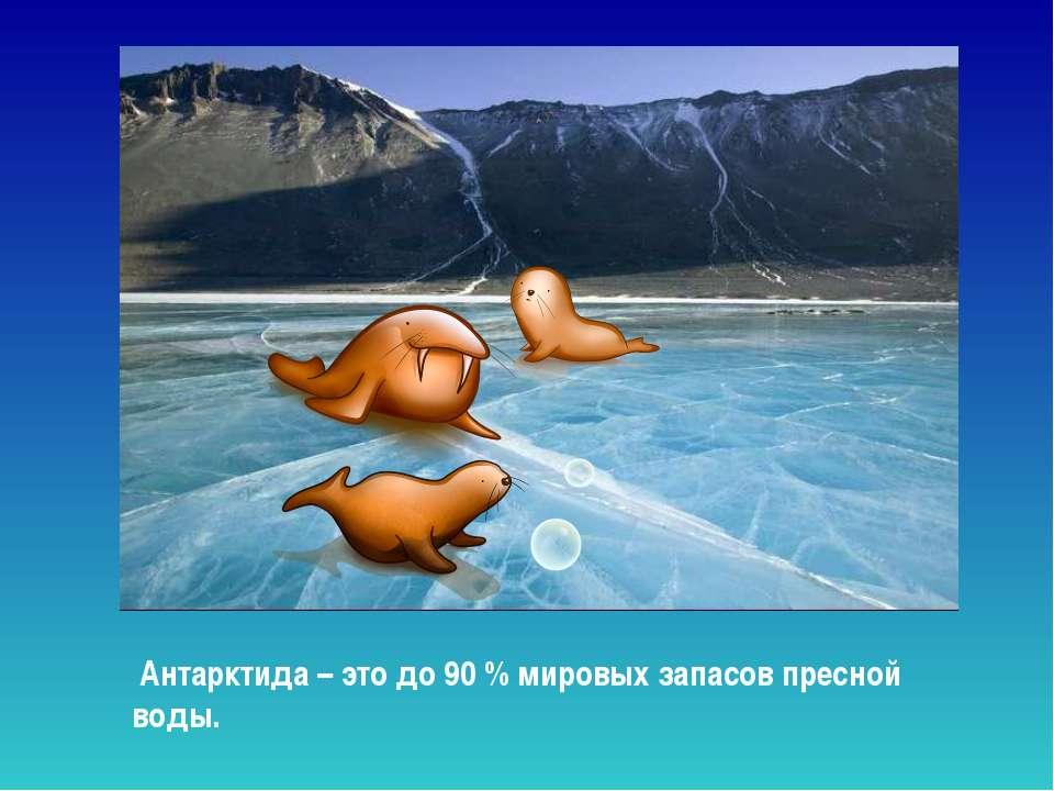 Антарктида – это до 90 % мировых запасов пресной воды. Антарктида – это до 90...