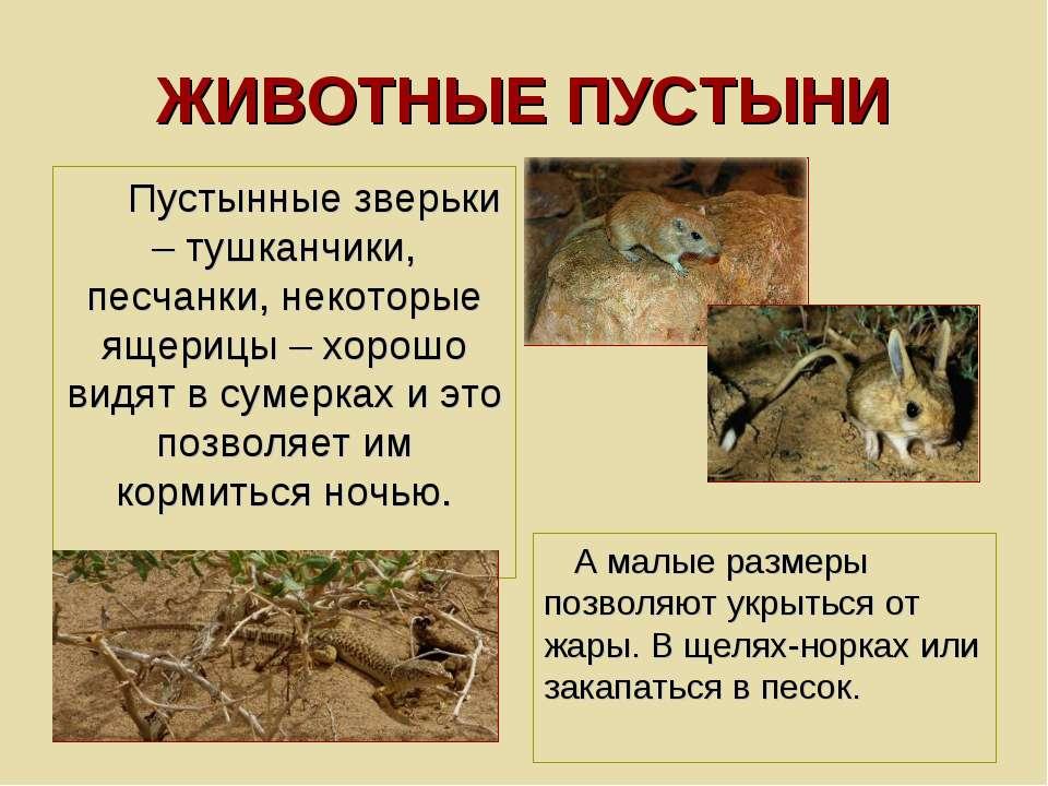ЖИВОТНЫЕ ПУСТЫНИ Пустынные зверьки – тушканчики, песчанки, некоторые ящерицы ...