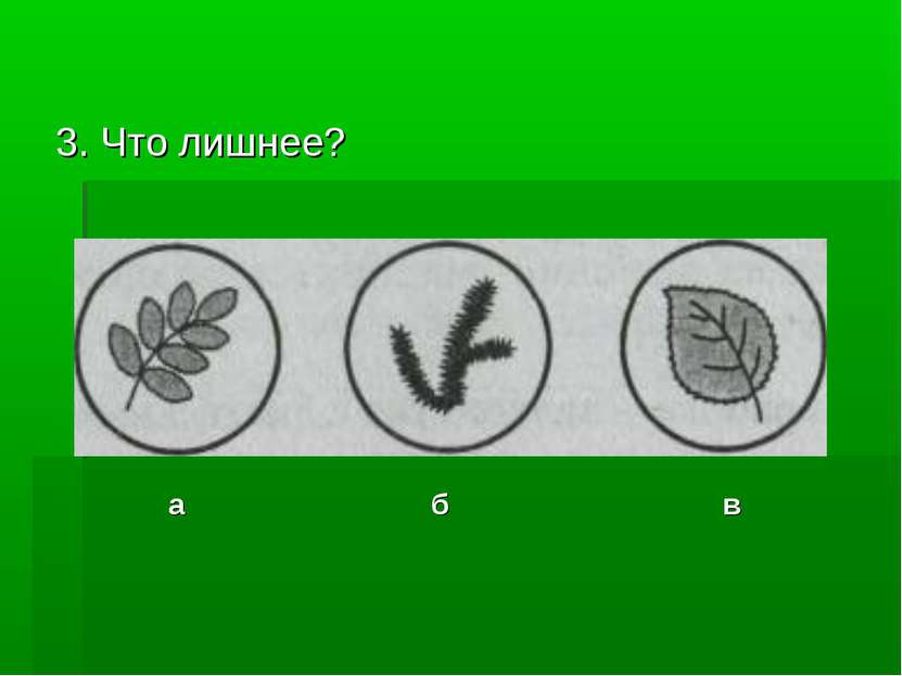 3. Что лишнее? а б в