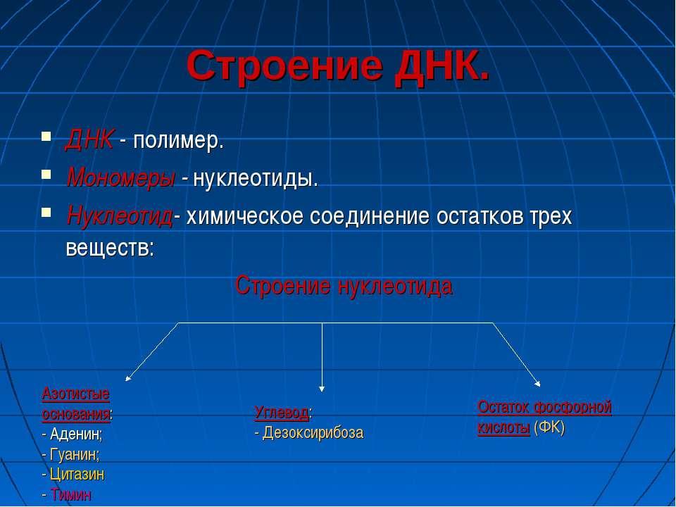 Строение ДНК. ДНК - полимер. Мономеры - нуклеотиды. Нуклеотид- химическое сое...