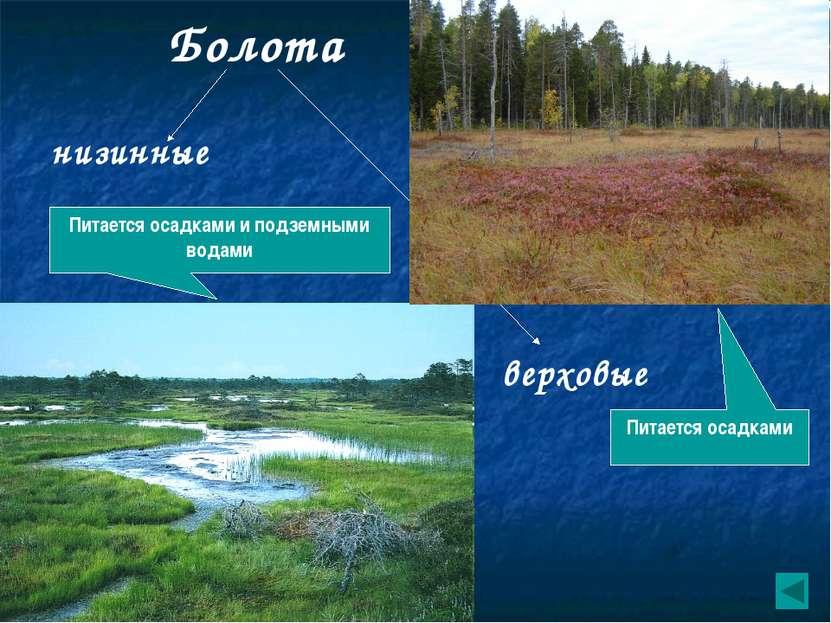 Влияние человека на водные ресурсы. Использование воды Водопользование 1.Рыбн...