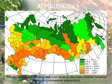 Площади сельскохозяйственных угодий (тысяч гектар) на территории субъек...