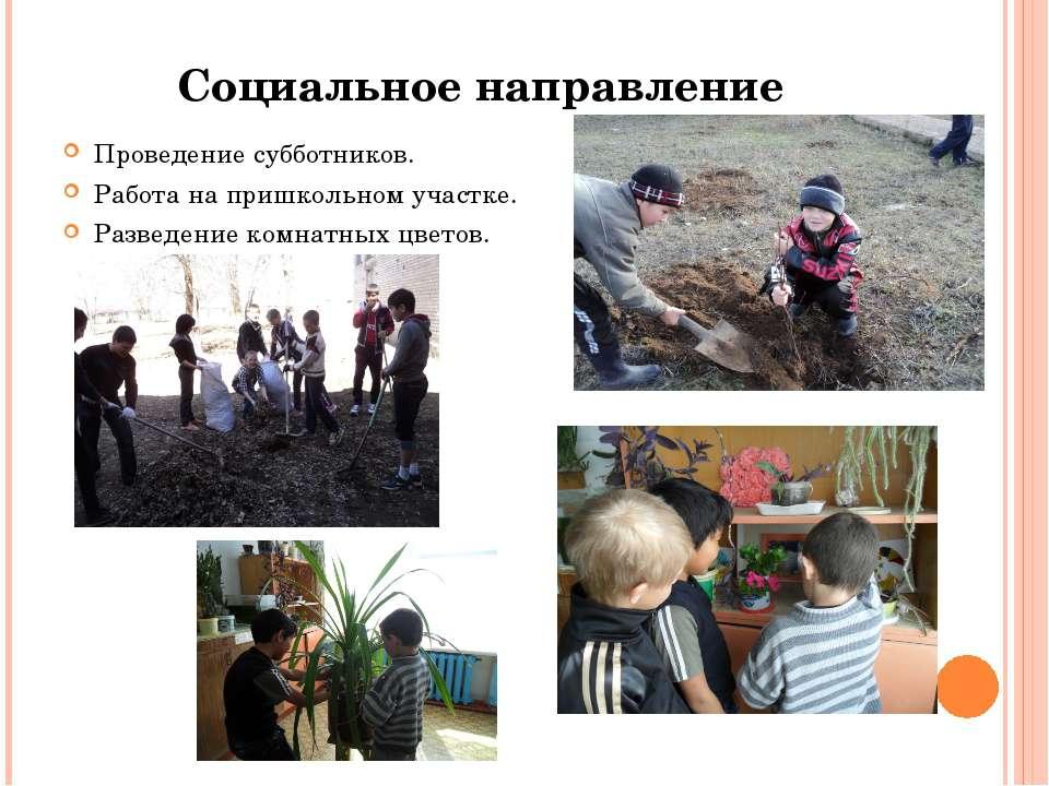 Социальное направление Проведение субботников. Работа на пришкольном участке....