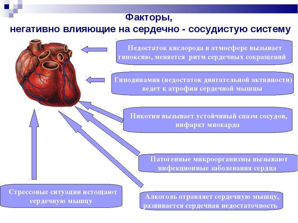 Факторы, негативно влияющие на сердечно - сосудистую систему Недостаток кисло...