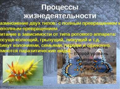 Процессы жизнедеятельности Размножение двух типов: с полным превращением и не...